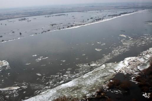 Nemune pajudėjo ledai