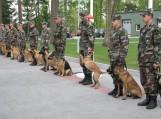Tarnybinių šunų varžybose dalyvavo Lietuvos - Rusijos sienos fizinę apsaugą užtikrinančių Pagėgių rinktinės Vileikių, Plaškių, Bardinų, Viešvilės, Rociškių, Kudirkos Naumiesčio ir Šilgalių užkardų  kinologai su savo augintiniais.