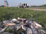 Vienam iš dalyvių pavyko pagauti beveik 11 kilogramų žuvies
