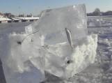 Įšalusio tinklo likučiai su jame įstrigusia žuvimi
