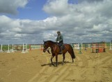 Raitelis ir žirgas – žavus duetas