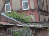 Vėtros padariniai Tilžės 33A ir 35 namo kieme, Šilutėje (Daivos Drakšienės nuotr.)