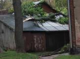 Vėtros padariniai Tilžės 33A ir 35 namo kieme, Šilutėje. Nuotraukos Daivos Drakšienės