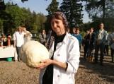 Valė Jaškienė rado 93 cm apimties, 2,9 kg didįjį kukurdvelkį. Nuotraukos Violetos Astrauskienės