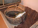 Spaudai - Žuvys