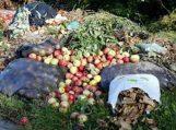 Per metus kiekvienas Lietuvos gyventojas išmeta apie 50 kg maisto atliekų