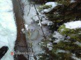 Naminę slėpė patvoryje – sniege