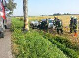 """Degučiuose į medį trenkėsi """"Audi A6"""", vairuotojas mirė"""