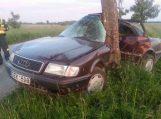 16-metis automobilį įvairavo į medį