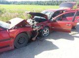Dėl avarijos vairuotojai kaltina didelę pakelės žilę