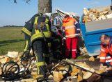 Malkas vežęs sunkvežimis rėžėsi į medį, vairuotojas ligoninėje