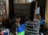 Nepažįstami asmenys kaimo gyventoją aprūpino naminuke, dyzelinu ir cigaretėmis