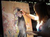 Jaunųjų dailininkų įspūdžiai iš plenero Bitėnuose