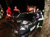 Per avariją Alkos kaime sužaloti du žmonės