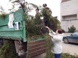 Kalėdinė dovana ir miškui, ir šalies gyventojams
