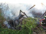 Ugniagesiai įspėja: nedeginkite pernykštės žolės!