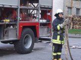 Pašyšiuose sudegė dirbtuvės