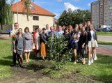 Šilutėje – magnolijų sodinimo akcija