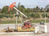 Naftininkų planams taryba nepritarė