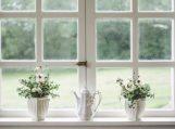 Kaip palaikyti gaivų orą namuose?