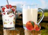 Šilutės baldų valgykla vasaros karščius pasitiks su pieno kokteiliais ir ledais