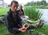 Šilutės miesto parko tvenkinyje sužvejojo piraniją