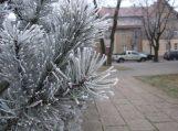 Orų prognozė Šv. Kalėdoms