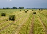 Žemės savininkai jau gali sužinoti, kiek mokės žemės mokesčio