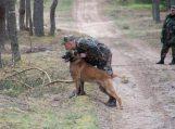 Belgų aviganis Armo padėjo sulaikyti du kontrabandininkus