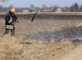 Už žolės deginimą – prarastos išmokos ir administracinės nuobaudos