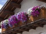 Balkonas 2