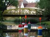 """Šios įspūdingo dydžio ir spalvingos plūdės – tai šių metų """"dailiokų"""" dovana. Nuotraukos Edvardo Lukošiaus"""