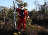 """""""Laplandas"""" skubantis į šventinį labdaros """"Kalėdinį bėgimą""""užstrigo aukštapelkėje. Nuotraukos Edvardo Lukošiaus"""
